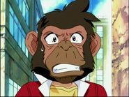 Tyson as Chimpanzee according to Daichi