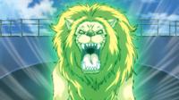 MFB Lion