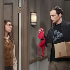 Sheldon trying to make Amy jealous.