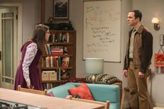 Sheldon-Amy