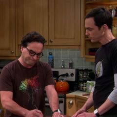 Once again Sheldon is condescending, so Leonard signs.