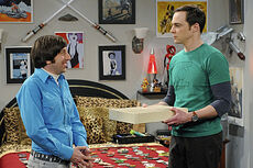 Sheldon receives a box with the maid outfit