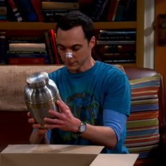 The cremation urn Sheldon bought for Leonard.