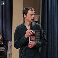 Sheldon after he slept with a geology book.