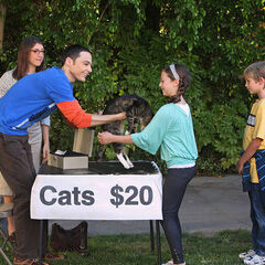Sheldon gives away his cats with the help of Amy after the two reconciled with the help from Sheldon's mother.