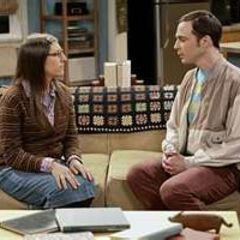Sheldon asking Amy to convince Penny to get rid of her new couch