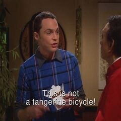 Sheldon arguing with the Chinese restaurant owner.