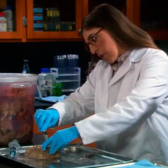Amy slicing a brain specimen to check out for tumor
