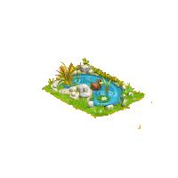 Laguinho dos patos