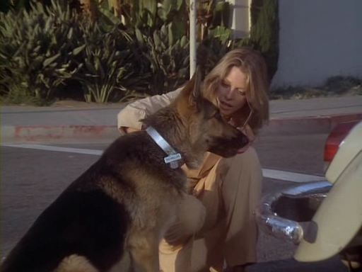 File:The.Bionic.Woman.S03E01.DVDrip.XviD-SAiNTS.avi 002431920.jpg