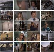 Th-The.Bionic.Woman.S03E01.DVDrip.XviD-SAiNTS