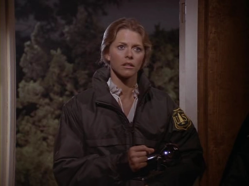 File:The.Bionic.Woman.S03E02.DVDrip.XviD-SAiNTS.avi 001234840.jpg