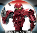 Which Toa Are You?