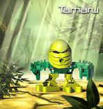 Tamaru Tohunga