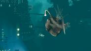 SharkandAnglerfish