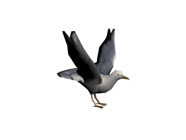 File:Seagull0000.png