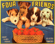 Four Friends Tomatoes Crate Label