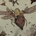 Bee Gastrea
