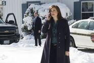 The Blacklist - Episode 1.15 - The Judge - Promotional Photos (4) 595 slogo