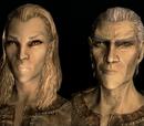 Haut-Elfe