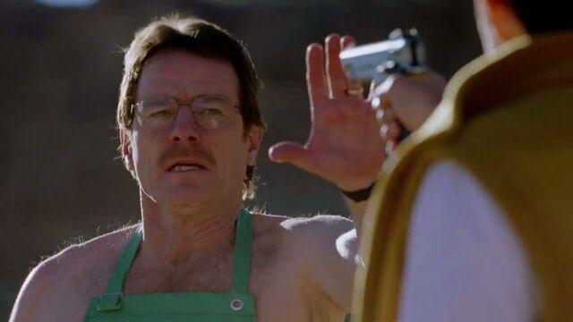 File:1x01 - Walt at gunpoint.jpg