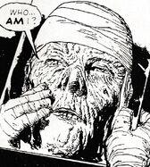 Judge Dredd's face