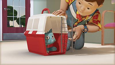 bob builder cat