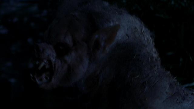 File:Nina as werewolf.png