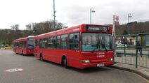 London Bus Route T31