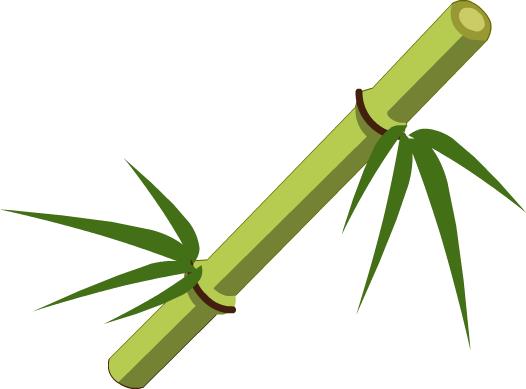 Cartoon Bamboo Stick ~ Image bamboo the c i r l e wiki fandom
