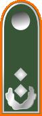 File:BwOberstleutnant.png
