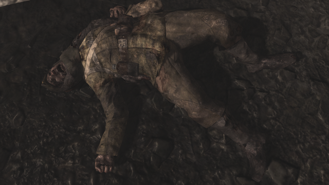 File:Chernov's Burnt Body WaW.png