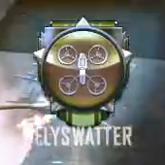 Flyswatter Medal BOII