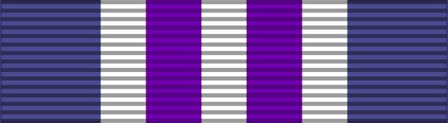 File:Award, Custodian.png