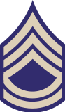 File:US Army WWII TSGT.png