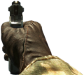 ASP Iron Sights BO.png