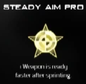 File:Steady Aim Pro MW3 CreateAClass.png
