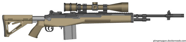 File:PMG The m14 ebr scoped.jpg