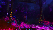Rave in the Redwoods View 5 IW