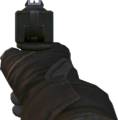 KAP-40 Iron Sights BOII.png