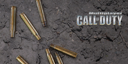 Multiplayer menu screen CoD1