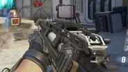 S-12 Target Enhancer Suppressor AW