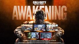Awakening Promotional Poster.jpg