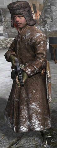File:Soviet PPSh-41 CoD2.png