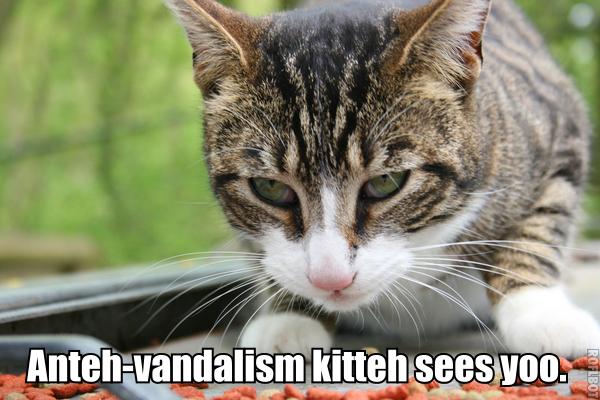 File:PERSONAL EviHard Anteh-vandalism kitteh lolcat.jpg
