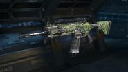 ICR-1 Gunsmith Model Contagious Camouflage BO3