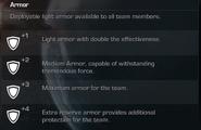 Armor Description CoDG