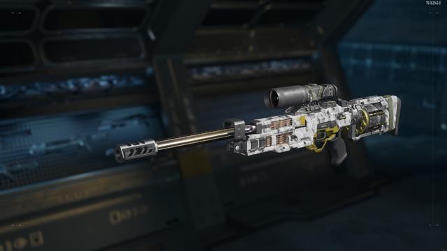 File:RSA Interdiction Gunsmith Model Ash Camouflage BO3.png