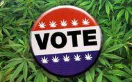 Vote cannabis