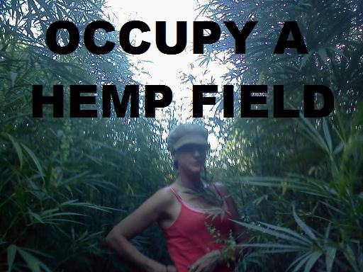 File:Occupy a hemp field.jpg